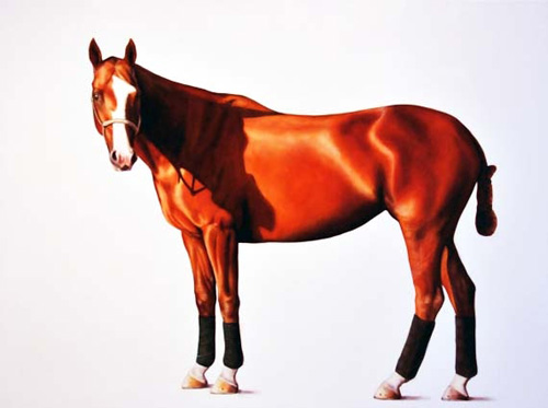 Zena 2011 - oil on linen - 118 x 167 cm