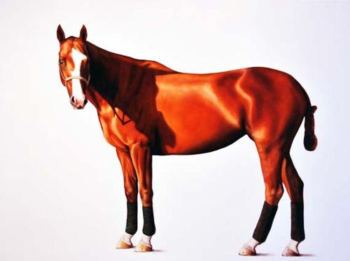 Zena 2011 - oil on linen - 118 x 167 cm